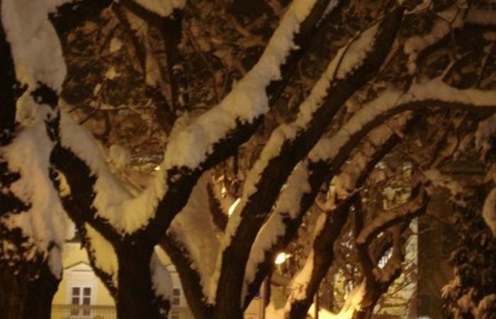 Galleria Fotografica Alto Adige Piazza Gries a Bolzano sotto la neve