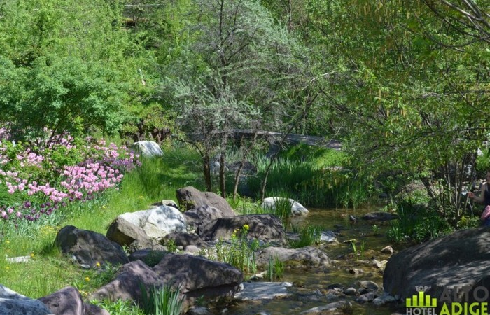 Photo Gallery South Tyrol The beautiful gardens of Merano